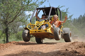 Buggy and Quad Safari Adventure from...