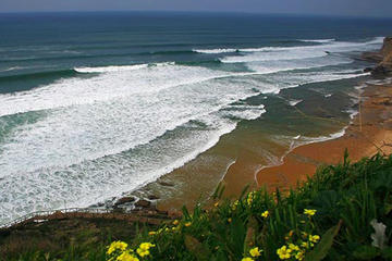 8 Days and 7 Nights at Surf Family in Ericeira from Lisbon