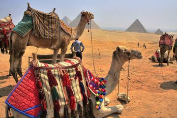 17-Night Jordan and Egypt Highlights with Nile Cruise, Red Sea