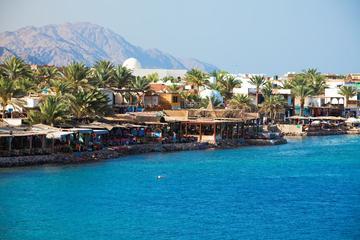 Ampliación de 13 días en Dahab en el Mar Rojo más un tour por el...