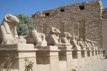 Excursão particular de 7 noites em Luxor e Resort no Mar Vermelho...