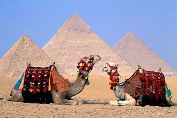 Tour privato del complesso di Giza e del Museo egizio