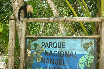Guided Tour of Manuel Antonio National Park from Jaco