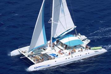 Excursión en catamarán y lancha motora a la isla paradisíaca de Saona
