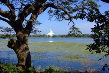 Full-Day Private Anuradhapura Sacred...