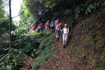 Walking Tour - Sanguinho