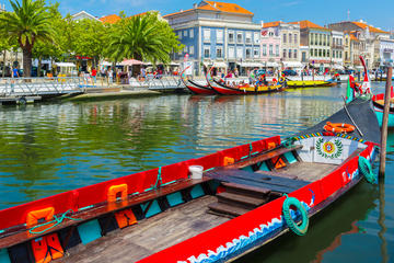 Aveiro Half Day Private Tour from...