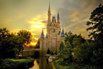 Disneyland or Disneysea 1-Day Passport Ticket and Private Transfer...