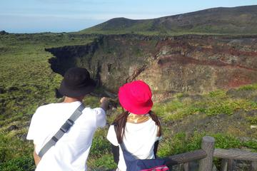 Half Day Geo Tour at Remote Volcanic Island in Tokyo