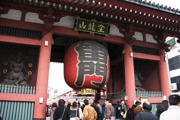 Private Tokyo Custom Half-Day Tour by ...