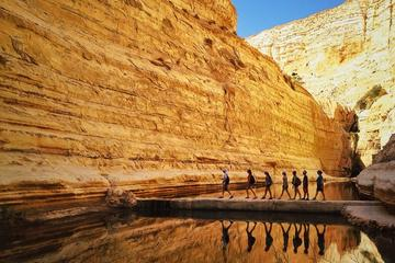 Private Tour: Highlights of the Negev from Tel-Aviv
