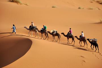7-Night Private Caravan Trail Explorer Tour from Casablanca