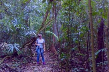 Lacandon Jungle 3-Day Adventure Tour...