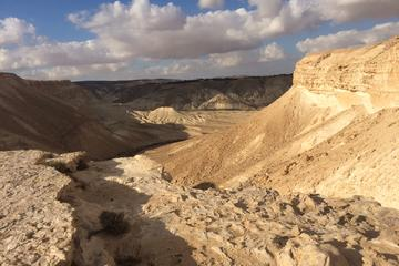 Negev Desert Private Day Tour from...