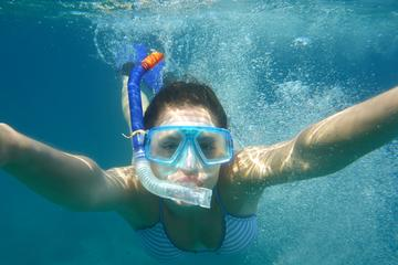 Snorkeling Trip to Giftun Island from...