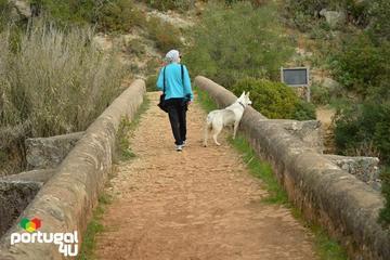 Historical Albufeira Walking Tour