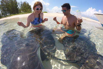 Combo Stingray Feeding and Multi-Reef Snorkel Tour