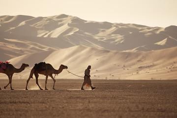 Empty Quarter & a Lost city from...