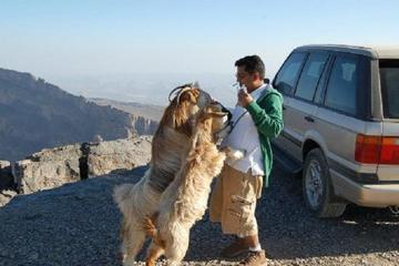 Jebel Shams (Day trip) 4WD The Grand ...