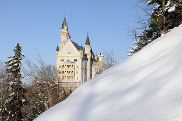 Full-Day Bavarian Castles Tour from...