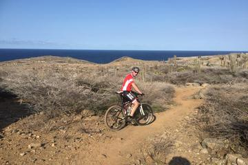 Advanced and Extreme Customized Mountain Bike  around the Island 75km