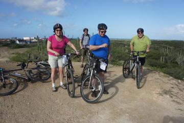 Mountainbike 2 hours for beginner intermediate riders