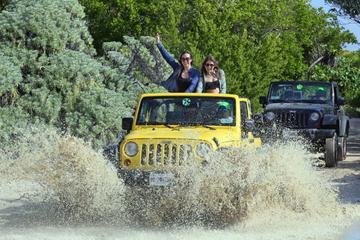 Aventure en jeep à Cozumel : Eco-Parc de Punta Sur, plongée avec...