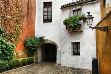 Visita guiada a pie por Santa Cruz en Sevilla