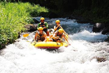 Bali White-Water Rafting and Coffee Plantation Tour