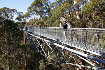 3-Day South West Tour from Perth Including Margaret River, Busselton and Albany