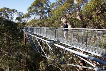 3 Tage Südwestreise ab Perth mit Margaret River, Busselton und Albany