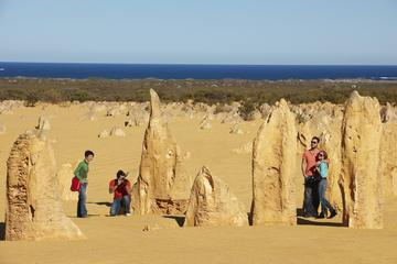 Pinnacles Day Trip from Perth Including Caversham Wildlife Park and Lancelin Dunes Sandboarding
