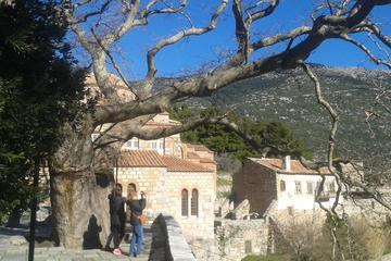 Excursion privée d'une journée complète à Delphes et Osios Loukas au...