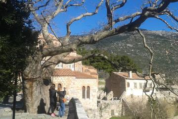 Tour privato di un giorno a Delfi e Ossios Loukas da Atene