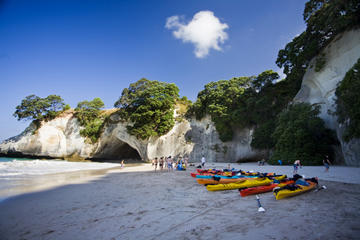 6-Day North Island Adventure Tour - Auckland to Wellington Return