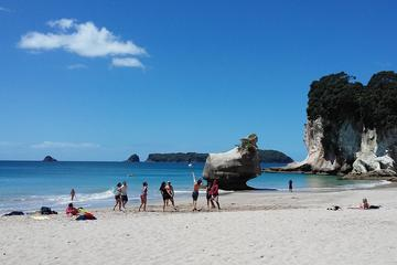 North Island Flexible Adventure Bus Pass - Auckland to Wellington...