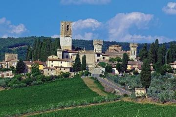 Badia a Passignano Visit and Chianti Tasting Experience