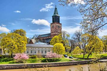 Full-Day Guided Turku and Castle Tour...