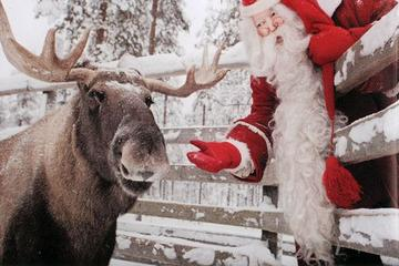Lapland Ranua Zoo Guided Trip from