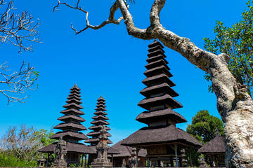 Full-Day Bali Sightseeing Tour to...