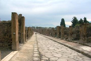 Visite libre à Pompéi, Herculanum et au mont Vésuve au départ de...