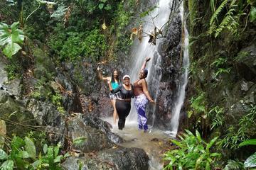 El Yunque-Regenwald: Tagesausflug in...