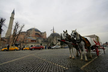 Full Day Istanbul Classics and Bosphorus Cruise Tour