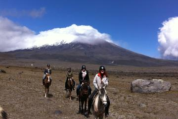 Cotopaxi Overnight Horseback Riding...