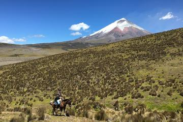 Private Horseback Riding at Cotopaxi Volcano from Quito