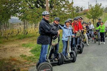 Segway Tour Monferrato Hills and...