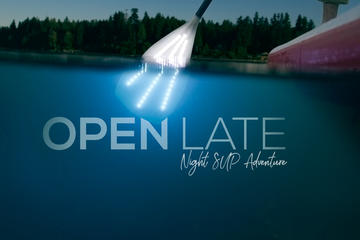 Toronto Island Night SUP Adventure