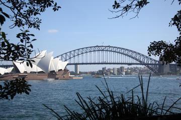 シドニー オペラ ハウス ハーバー ブリッジと…
