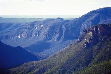 Priv. Ausflug ab Sydney: Blaue Berge inkl. Featherdale Wildlife Park