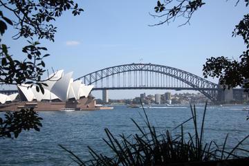Private halbtägige Besichtigungstour in Sydney mit Oper, Hafenbrücke...